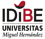 IDiBE logo