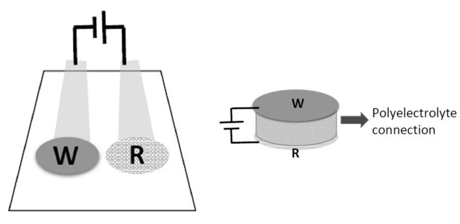 Potentiometric sensor