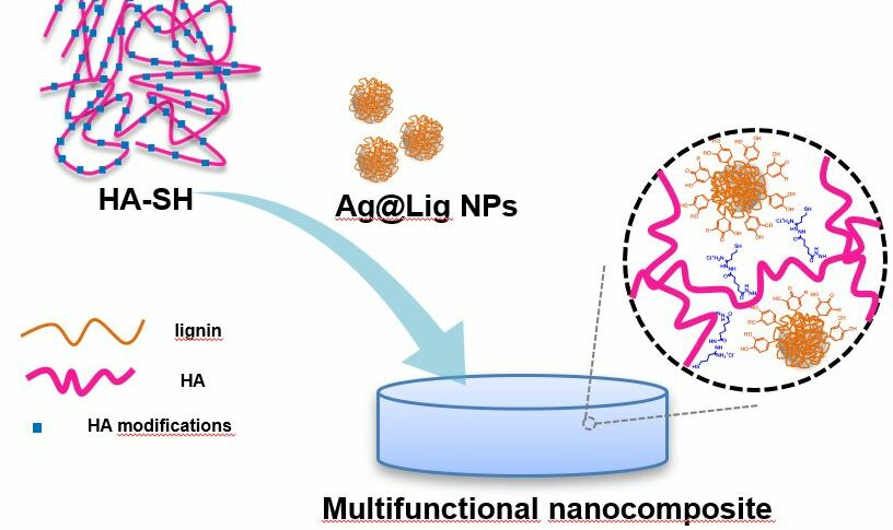 Nanoenabled Hydrogels For Advanced Skin Care
